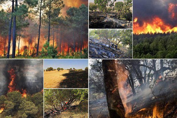 وقوع 2 فقره آتش سوزی در مراتع غرب مازندران